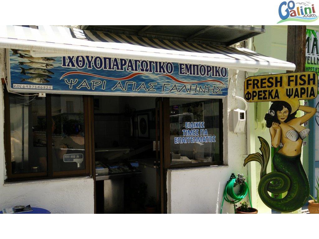 Local fish market in agia galini for Local fish store