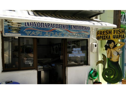 agia galini fish shop